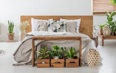 How to help the environment, even from the comfort of your bed